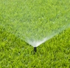 Grass Sprinkler.jpg